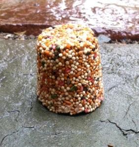 bird seed cake
